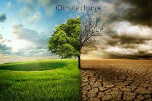 climate-change-0-300x200